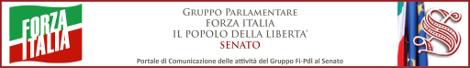 banner-senato